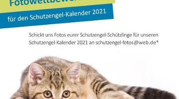 Aufruf: Fotowettbewerb 2020